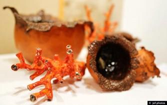 Description: Nèfles et coraux rouges - terre cuite émaillée Auteur: photo J-F Busch